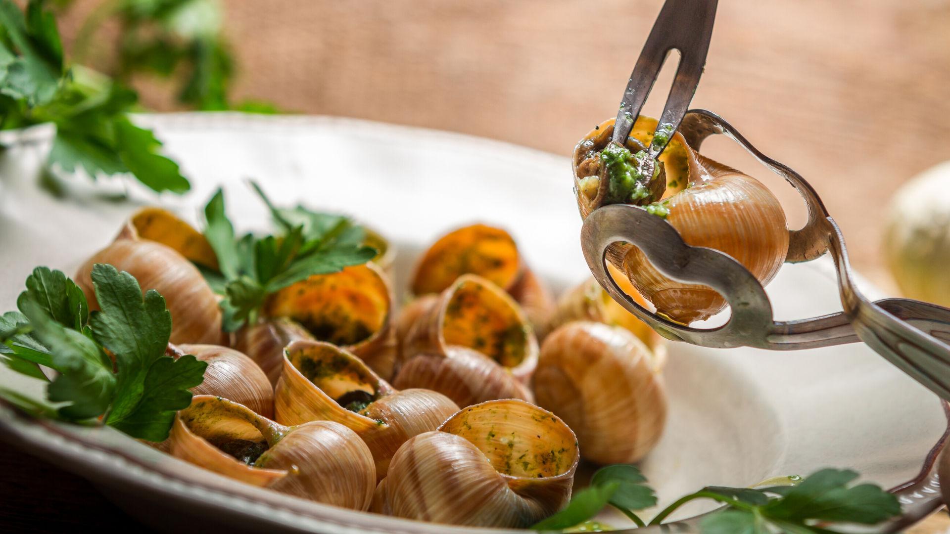 piatto-di-lumache-lesse-di-terra-naturali-biologiche-nostrane-roseto-degli-abruzzi-teramo